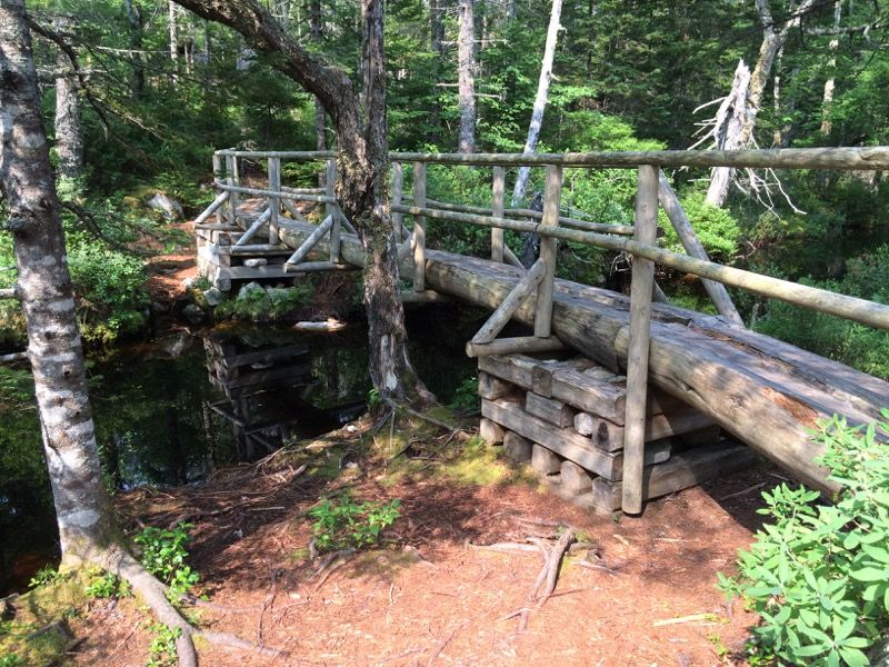 Bridge over small stream