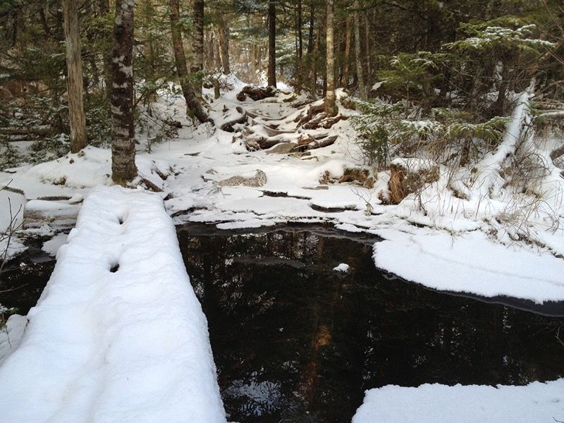 Crowbar Lake Trail, January 2013