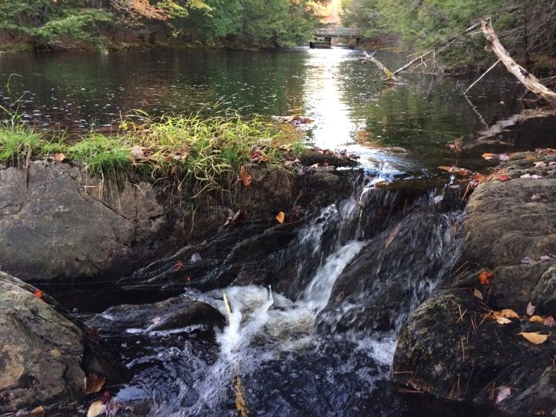 Small fall on Peskowesk Brook