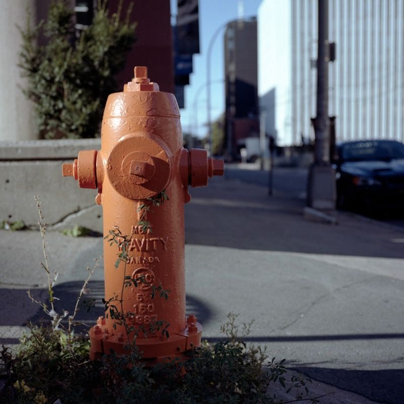 Lonely hydrant, evening