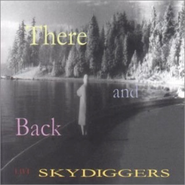 Album cover for There and Back (live) by Skydiggers